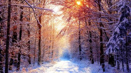 寒い時期に自らをパワーアップさせる養生法