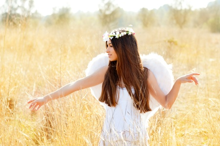 13181866 - angel etchnic woman in golden field with feather white wings and flowers crown