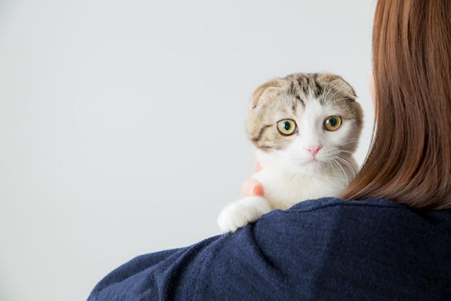 ペットってステイタス?ペットを飼って得られる嬉しい日常の3ポイント2