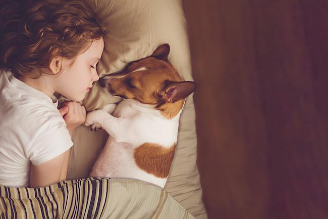長引く寝かしつけにウンザリ…「スムーズな寝かしつけ」のための夜の過ごし方3ポイント6