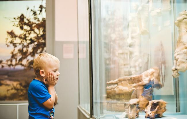 子どもと楽しめる美術館