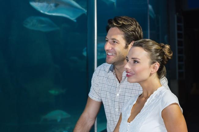 付き合う前のデートで行きたい♡二人のムードが盛り上がる水族館5選1画像