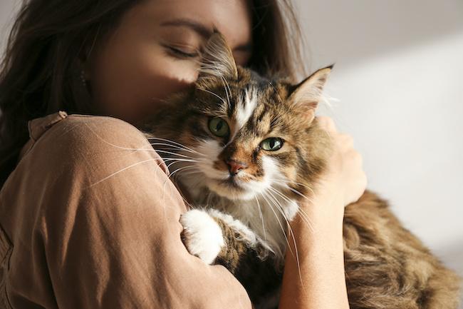 ハマっちゃう…!男性が猫系女子を好きになっちゃう3つの理由