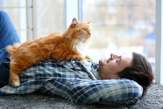 好きな女性のタイプもわかっちゃう?!猫好き男子の男子の特徴