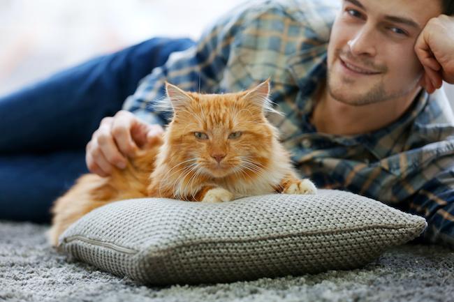 性格も猫みたい!?話題の「猫好き男子」に多い恋愛傾向3つ