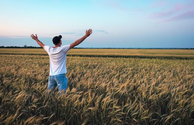 彼が地方で農業をやりたがっています【ひかりの恋愛相談室】1画像