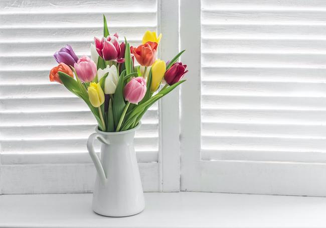 部屋に飾るだけなので超簡単!花風水で恋愛運をアップしよう2画像
